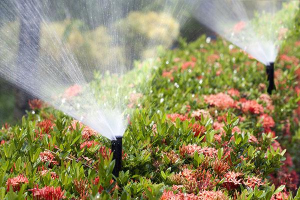 sprinkler systems san antonio tx