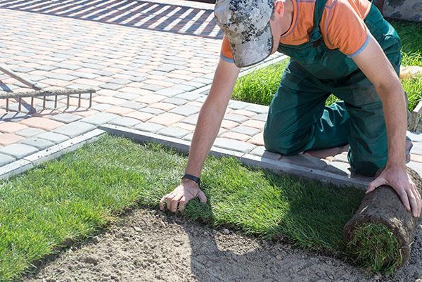san antonio residential landscaping